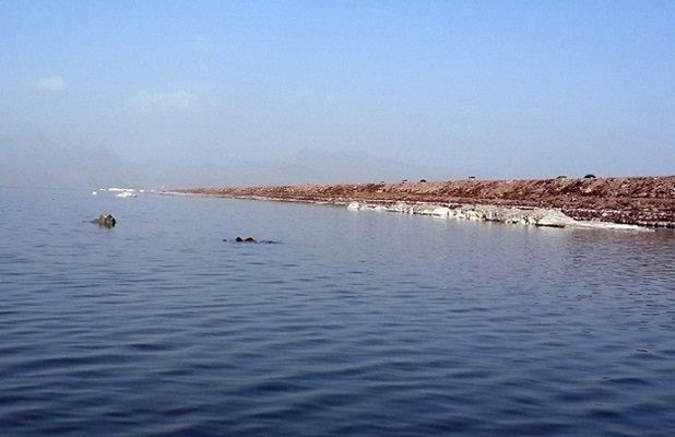توسعه کشاورزی در حاشیه دریاچه ارومیه ممنوع است