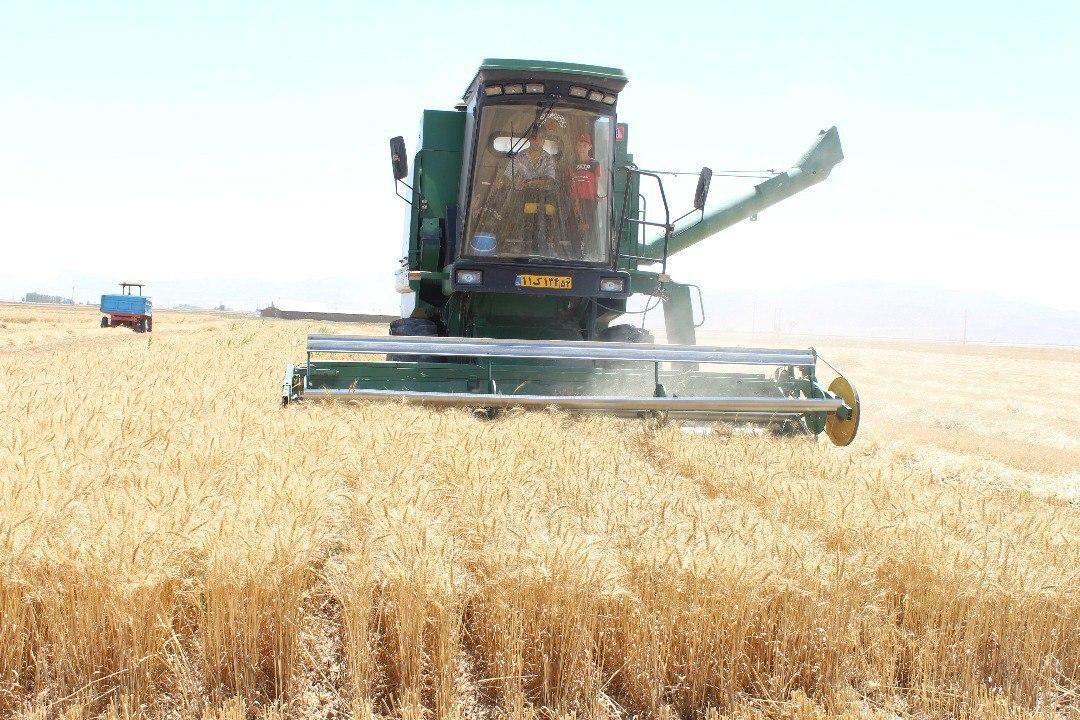 خبرنگاران فرماندار سقز: بستر لازم برای خرید گندم کشاورزان فراهم گردد