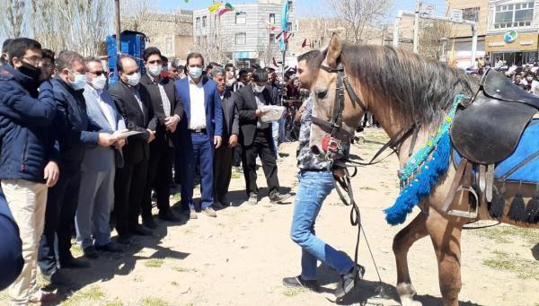 خبرنگاران ساوجبلاغ به قطب پرورش صنعت اسب در البرز تبدیل شده است